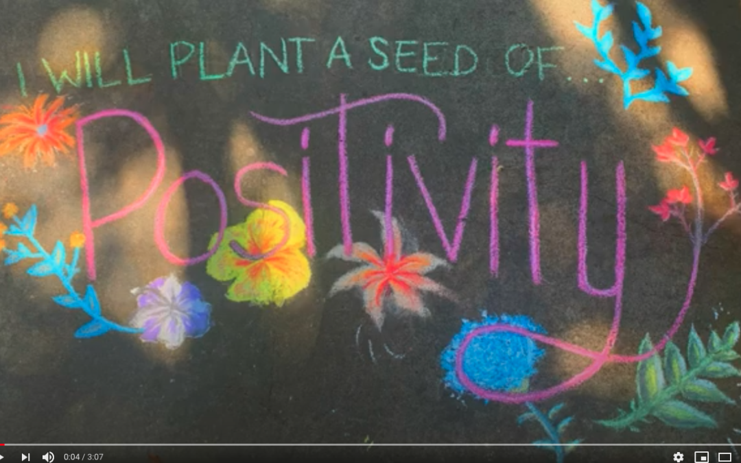 PUBLIC WORKS DALLAS SEED PROJECT